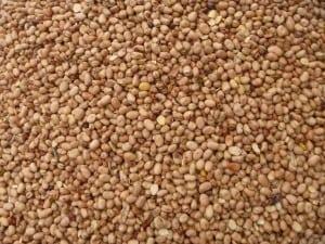 Dressed Beans