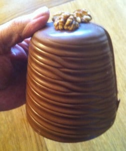Walnut Whip 1