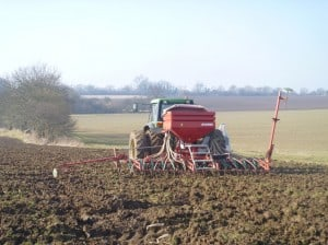 Drilling Beans
