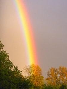 Rainbow 130513