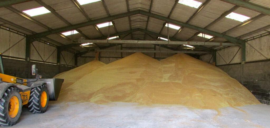 Grain heap