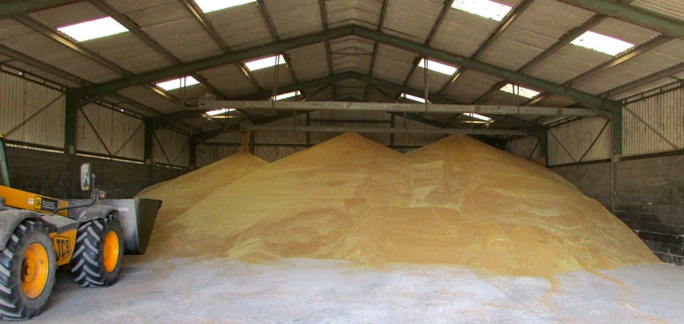 Grain-heap.jpg