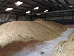 Wheat Heap