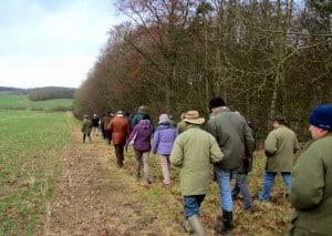 Farm Walk 2