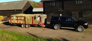 Delivering Hay