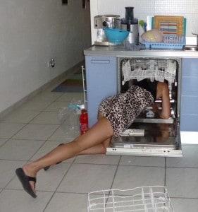 Dishwasher Fairy