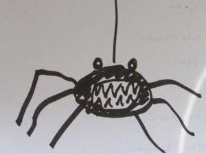 Alice Spider