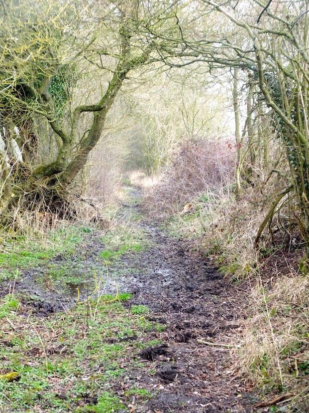 Footpath 180315