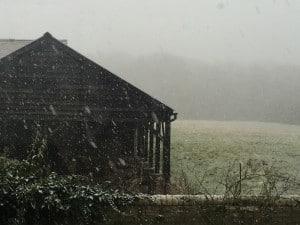 Snow3
